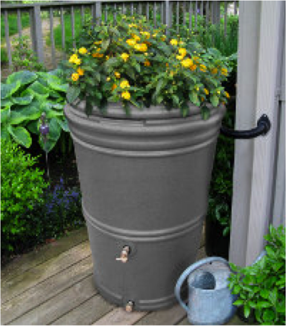 Bushman rain barrel